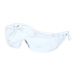 Blue Rapta Visitor Glasses Safety