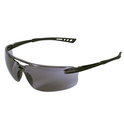Blue Rapta Echo 2 Safety Glasses