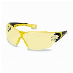 Pheos CX2 Safety Glasses